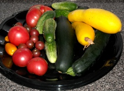 An example of our garden harvest