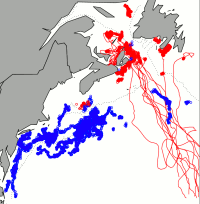 Inferred foraging locations of northern and southern leatherback turtles and departure tracks